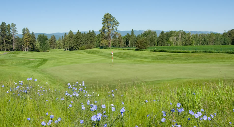 Northern Pines Golf Whitefish Montana Flathead Valley